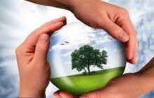 فضای مجازی برای متخلفان محیط زیستی در آذربایجان شرقی امن نیست